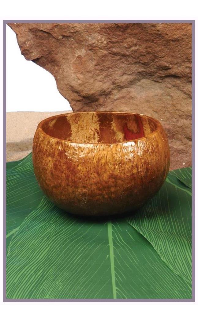 Coconut Cup - Standard MC-FF860020