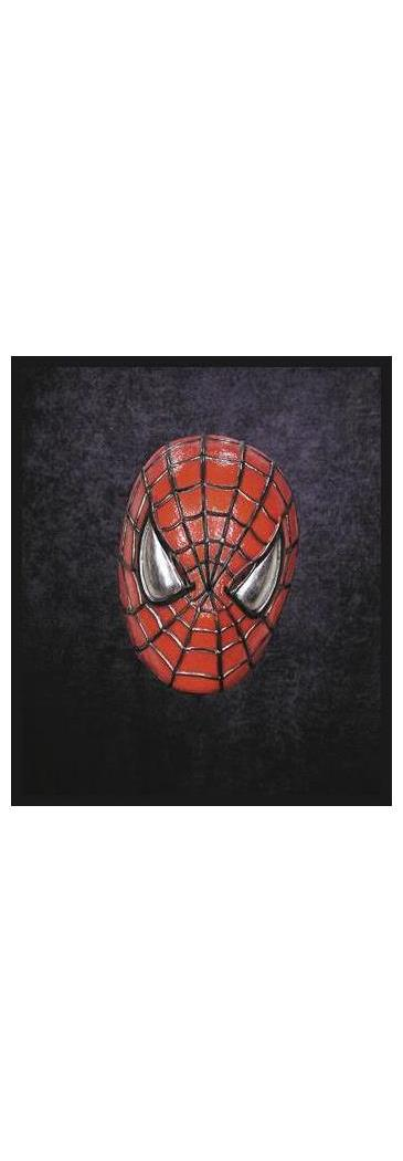 Men's Spiderman Vinyl Mask - Standard MC-TA246