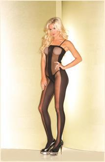 Women's Sheer bodystocking with opaque center and side panels - O/S
