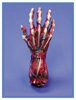 Skinned Right Hand Decoration Prop - Standard