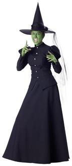 Wizard Of The Oz Witch Costume