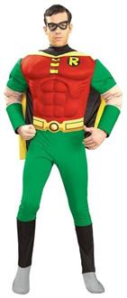 Men's Robin Adult Muscle Costume