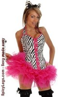 4 PC Pin-Up Zebra Costume