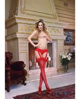 Thong with Attached Lace Garter and Fishnet Thigh Highs