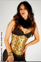 Gold Silk Corset with Black Velvet Vine