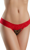 Lace V Cut, Low Rise Panties With Leopard Print