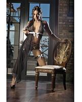 Sheer Mesh Gown with Panty and Lace Garters