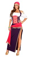 5 pc. Gypsy Maiden costume