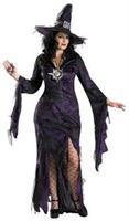 Sorceress Adult Large Costume