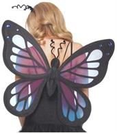 Butterfly Wings With Jewel Look Detailing