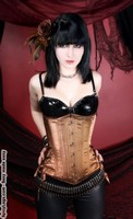 Long Cut Bronze Satin Shimmer Corset