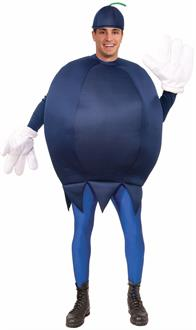 Blueberry Adult Costume One-Size