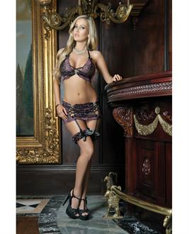 Bustier Top with Lacy Garter Skirt and Panty Set