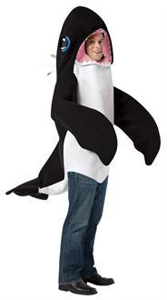 Killer Whale Adult