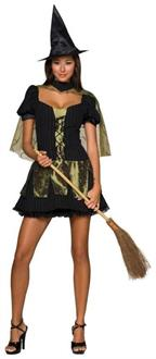 The Wizard of Oz Sexy Wicked Witch of the West Adult Costume