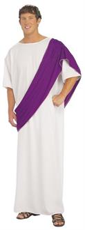 Roman Noble Adult Costume