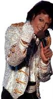 Michael Jackson Adult Sequin Glove