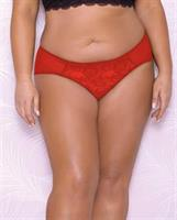 Scallop Lace and Mesh Hipster Panty Red