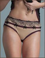 Embroidered Sheer Brief Panty
