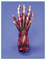 Skinned Right Hand Decoration Prop