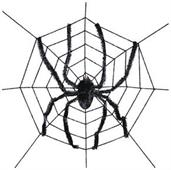 Spider Web With Spider Decoration